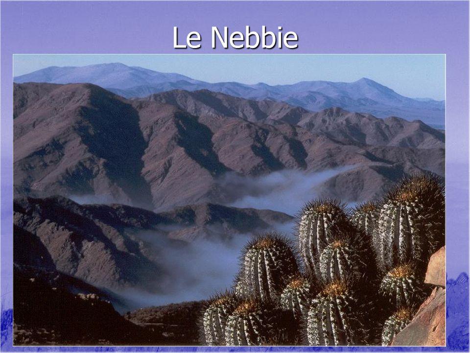 Le Nebbie