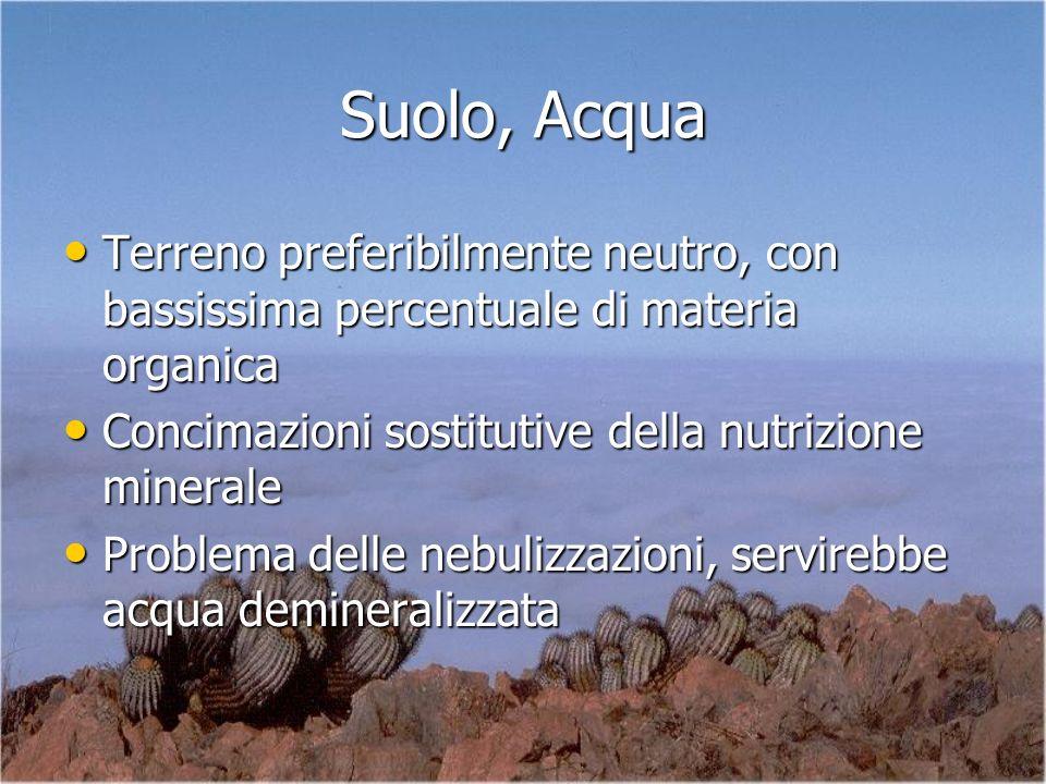Suolo, Acqua Terreno preferibilmente neutro, con bassissima percentuale di materia organica. Concimazioni sostitutive della nutrizione minerale.