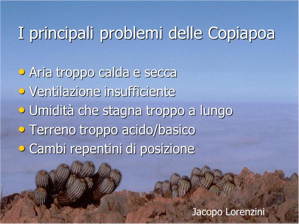 I principali problemi delle Copiapoa