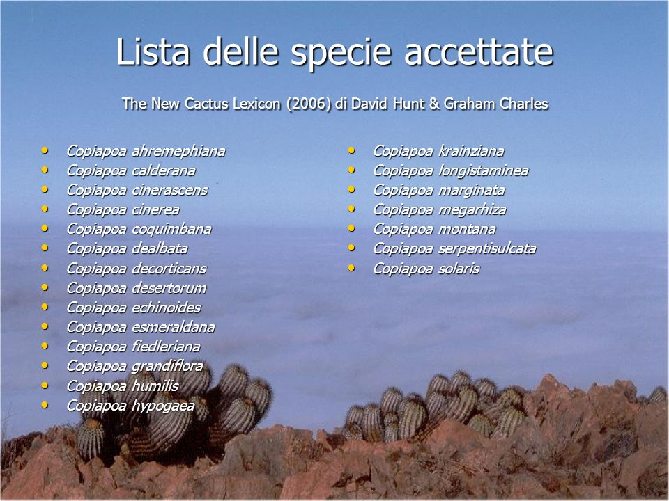 Lista delle specie accettate The New Cactus Lexicon (2006) di David Hunt & Graham Charles