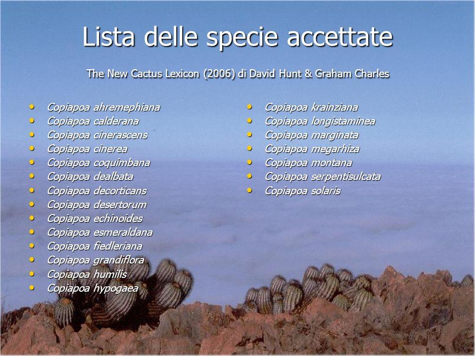 Lista delle specie accettate The New Cactus Lexicon (2006) di David Hunt & Graham Charles