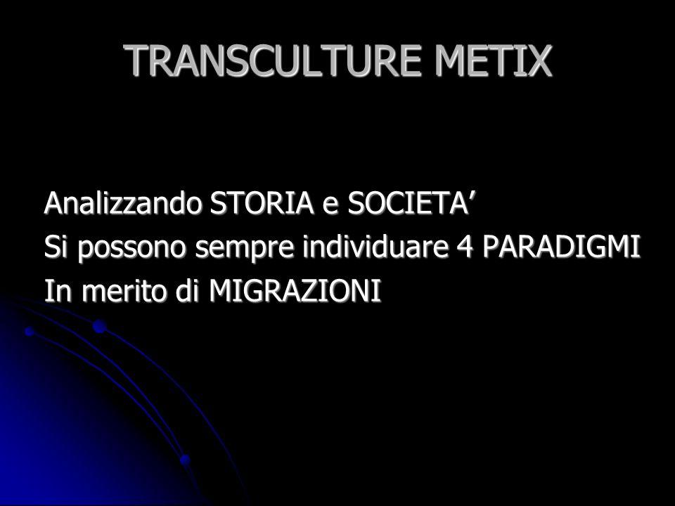 TRANSCULTURE METIX Analizzando STORIA e SOCIETA'