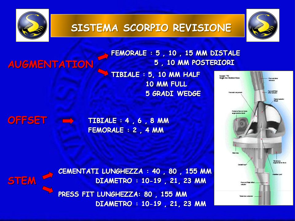 SISTEMA SCORPIO REVISIONE