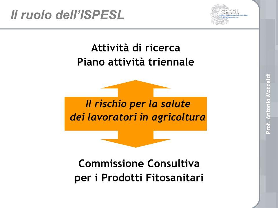 Il ruolo dell'ISPESL Attività di ricerca Piano attività triennale