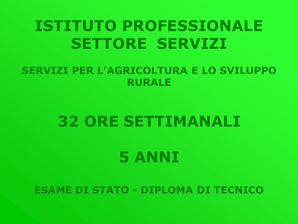 ISTITUTO PROFESSIONALE SETTORE SERVIZI