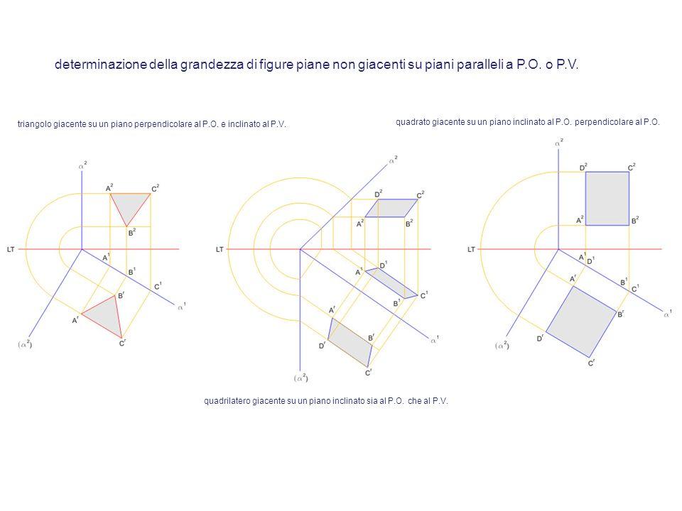determinazione della grandezza di figure piane non giacenti su piani paralleli a P.O. o P.V.