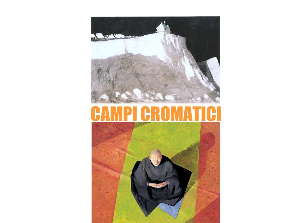 Julio larraz CAMPI CROMATICI