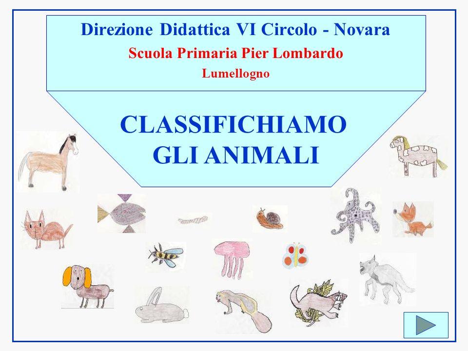Direzione Didattica VI Circolo - Novara Scuola Primaria Pier Lombardo