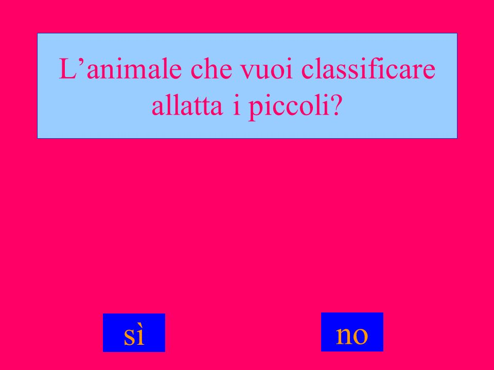L'animale che vuoi classificare allatta i piccoli