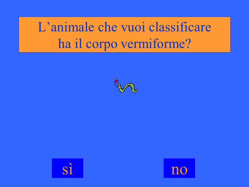 L'animale che vuoi classificare ha il corpo vermiforme