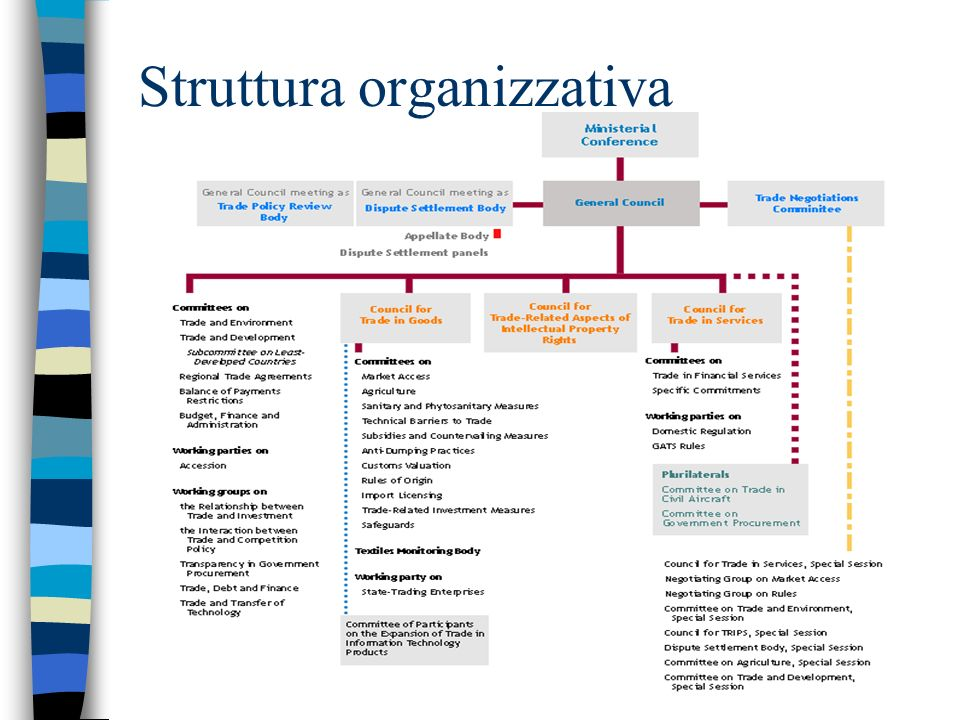 Struttura organizzativa