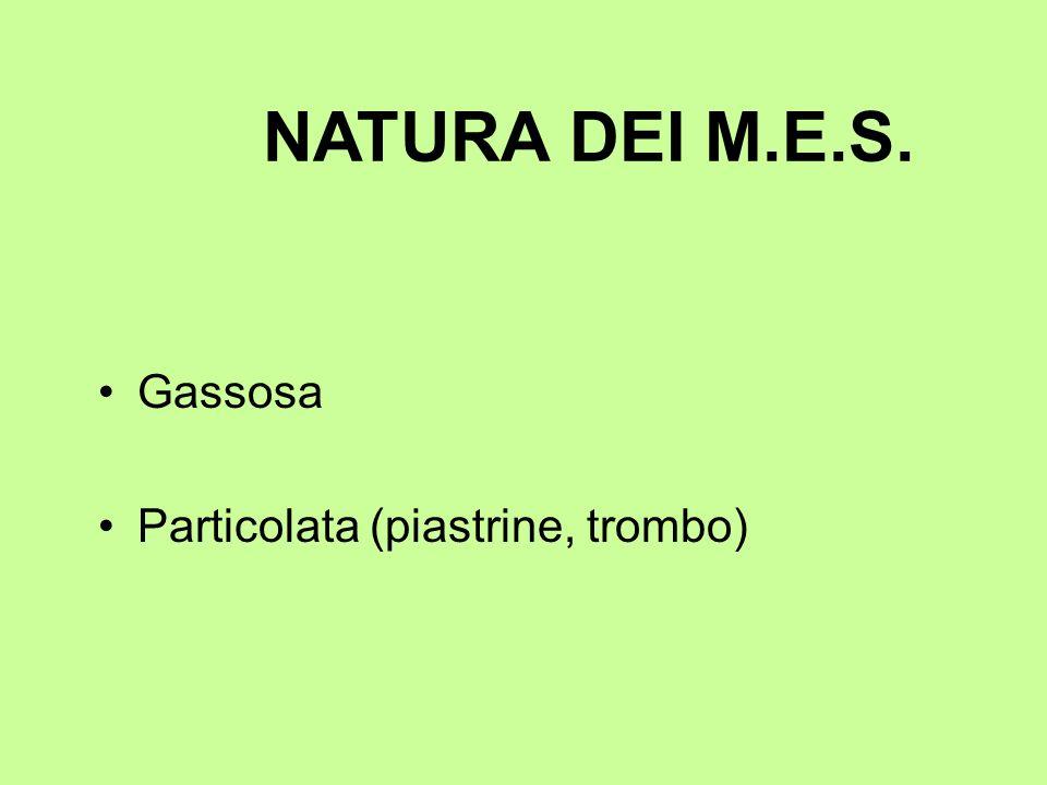 NATURA DEI M.E.S. Gassosa Particolata (piastrine, trombo)