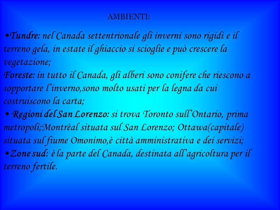AMBIENTI: