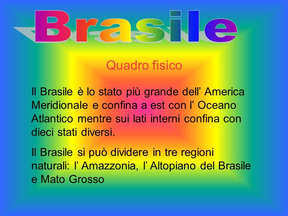 Brasile Quadro fisico.