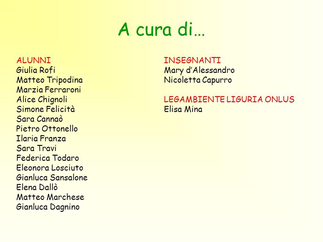 A cura di… ALUNNI Giulia Rofi Matteo Tripodina Marzia Ferraroni
