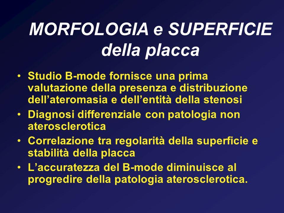 MORFOLOGIA e SUPERFICIE della placca