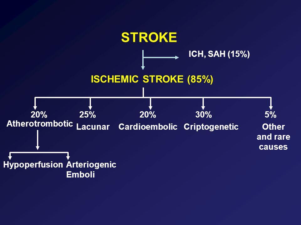 STROKE ISCHEMIC STROKE (85%) ICH, SAH (15%) 20% 25% 20% 30% 5%