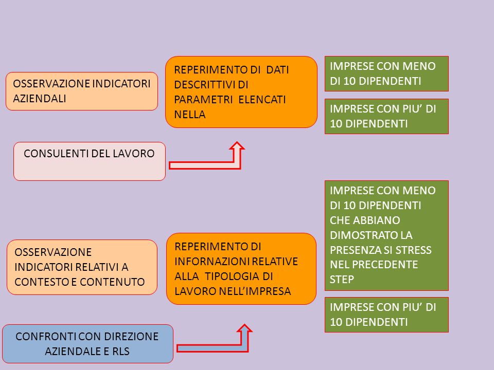 CONFRONTI CON DIREZIONE AZIENDALE E RLS