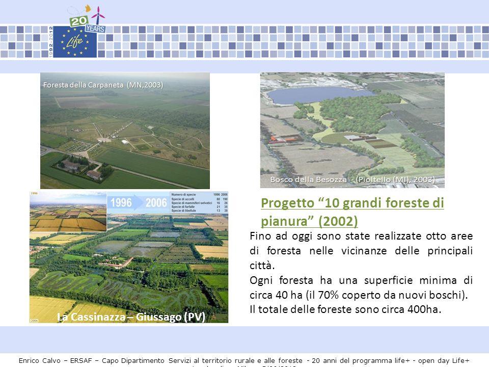 Progetto 10 grandi foreste di pianura (2002)