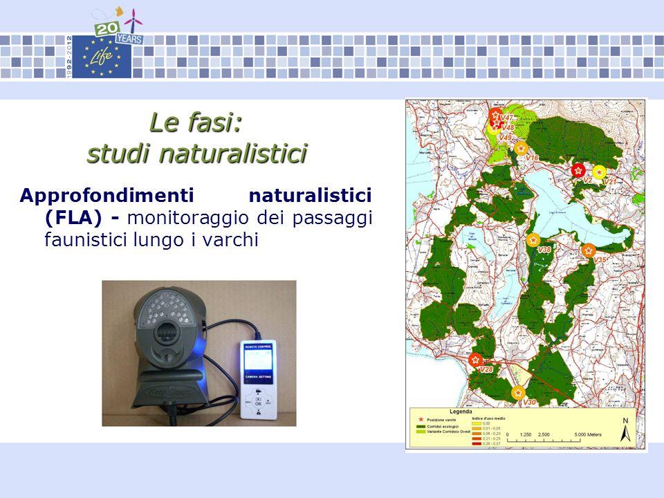 Le fasi: studi naturalistici