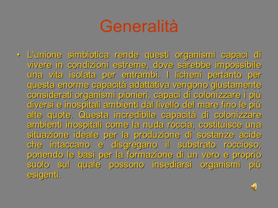 Generalità