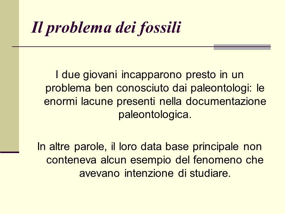 Il problema dei fossili