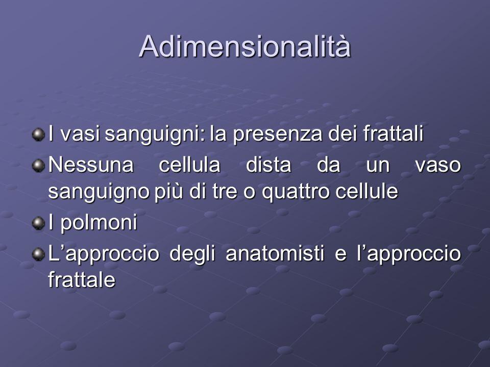 Adimensionalità I vasi sanguigni: la presenza dei frattali