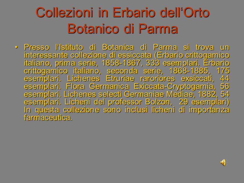 Collezioni in Erbario dell'Orto Botanico di Parma