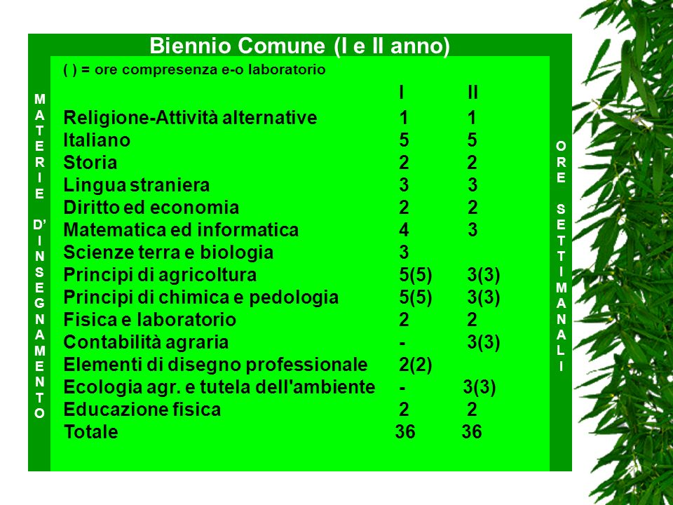 Biennio Comune (I e II anno)
