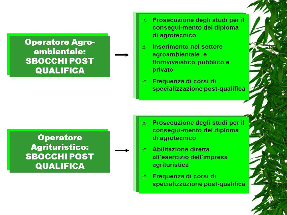 Operatore Agro-ambientale: SBOCCHI POST QUALIFICA