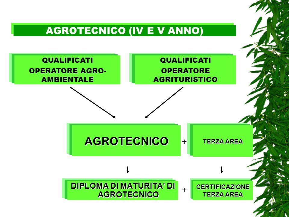 AGROTECNICO (IV E V ANNO)