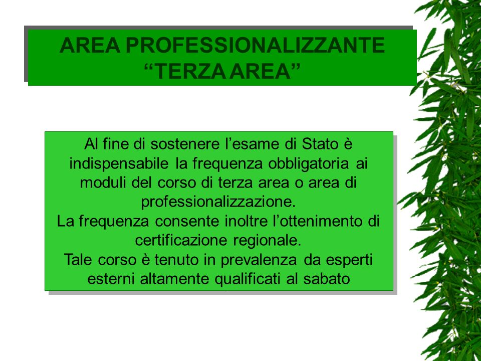 AREA PROFESSIONALIZZANTE TERZA AREA