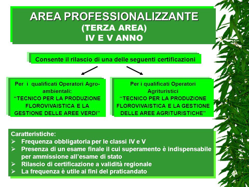 AREA PROFESSIONALIZZANTE (TERZA AREA)
