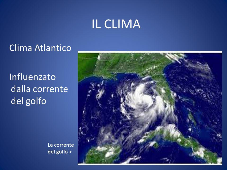 IL CLIMA Clima Atlantico Influenzato dalla corrente del golfo