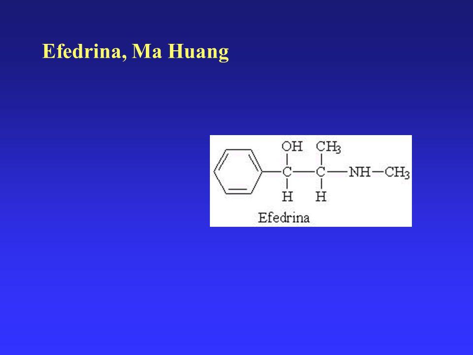 Efedrina, Ma Huang