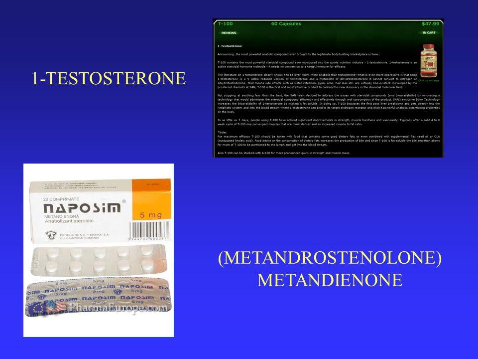 1-TESTOSTERONE (METANDROSTENOLONE) METANDIENONE