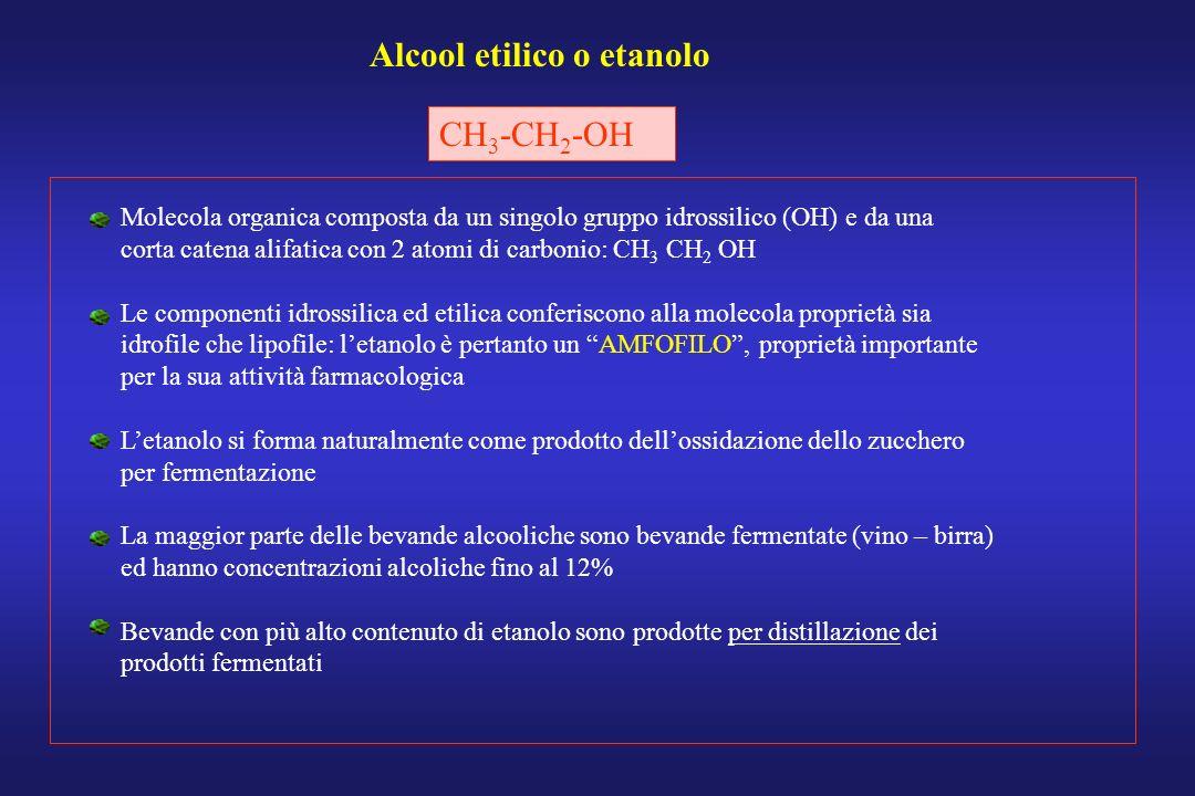 Alcool etilico o etanolo