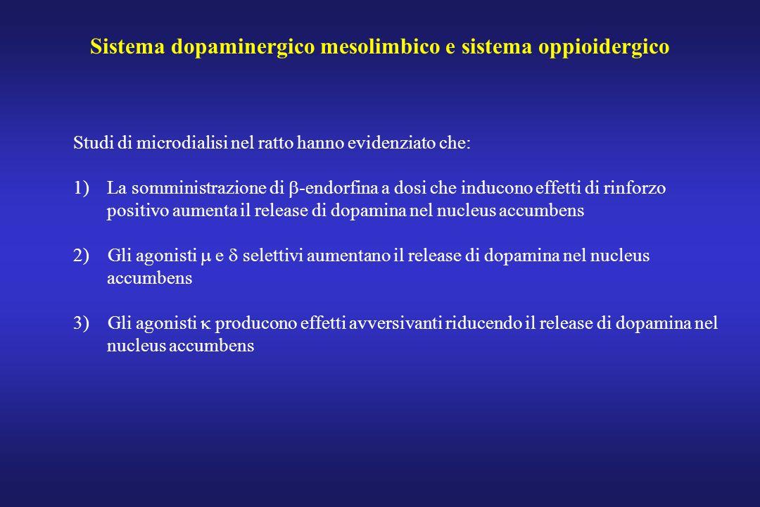 Sistema dopaminergico mesolimbico e sistema oppioidergico