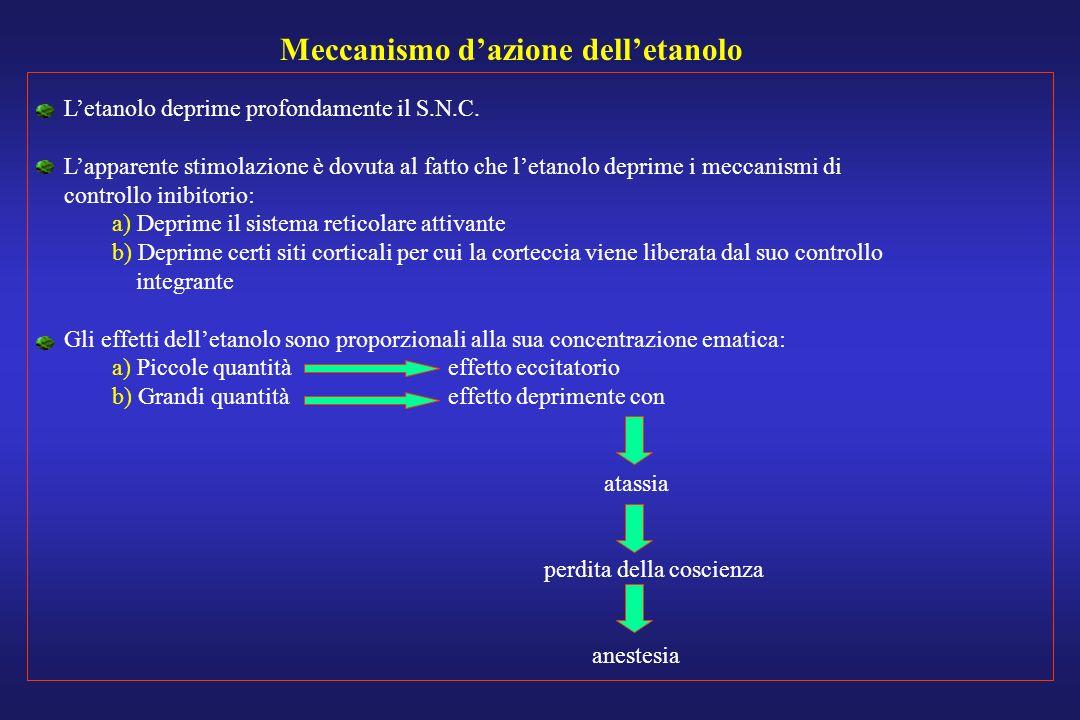 Meccanismo d'azione dell'etanolo