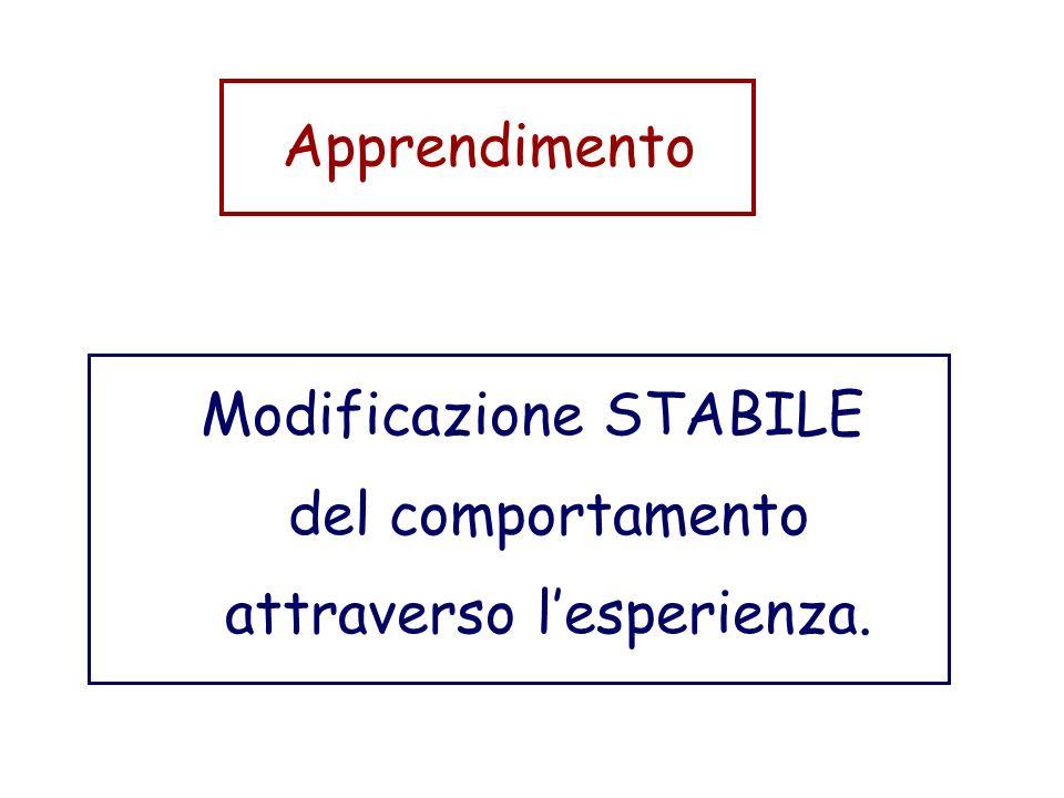 Modificazione STABILE del comportamento attraverso l'esperienza.