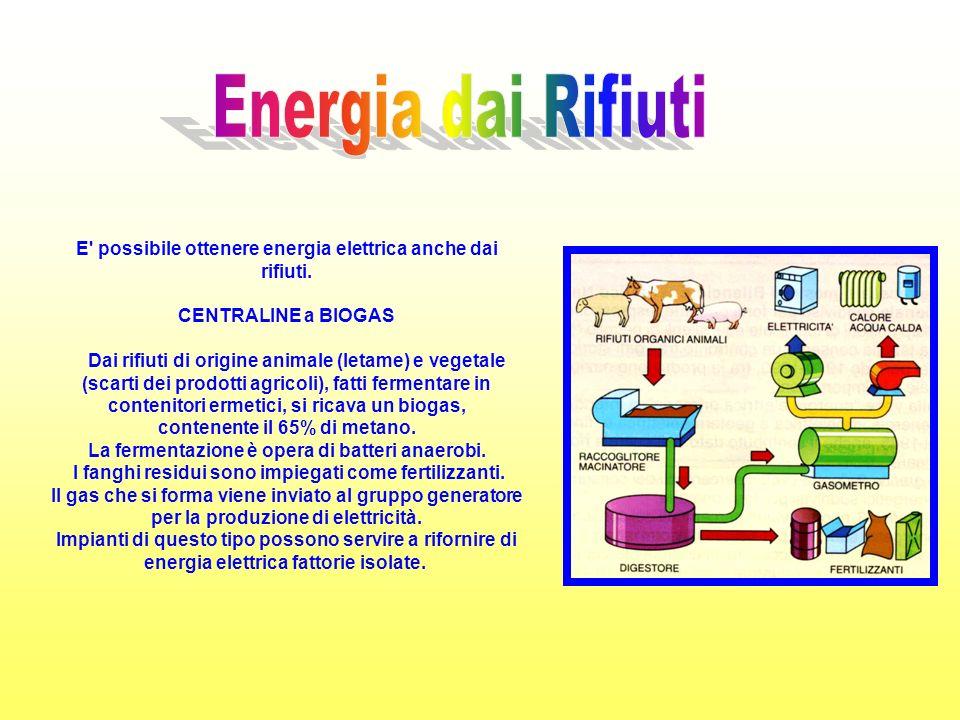 Energia dai Rifiuti E possibile ottenere energia elettrica anche dai rifiuti. CENTRALINE a BIOGAS.