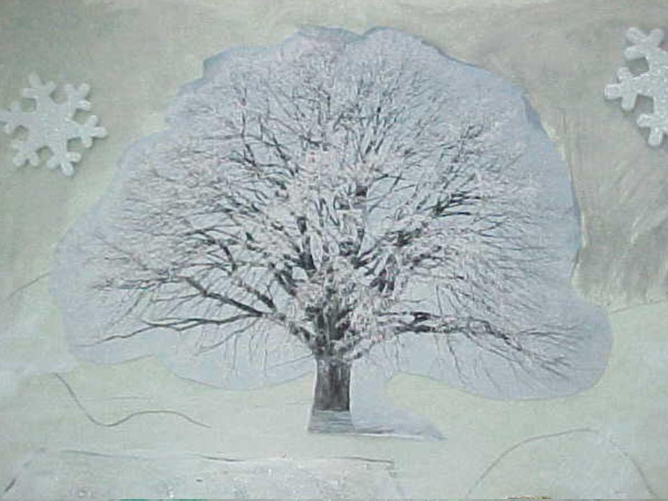 Per Sofia una piccola fata dell'inverno sorride immaginando il candore della neve ed il bianco della pelliccia di un ermellino infreddolito…