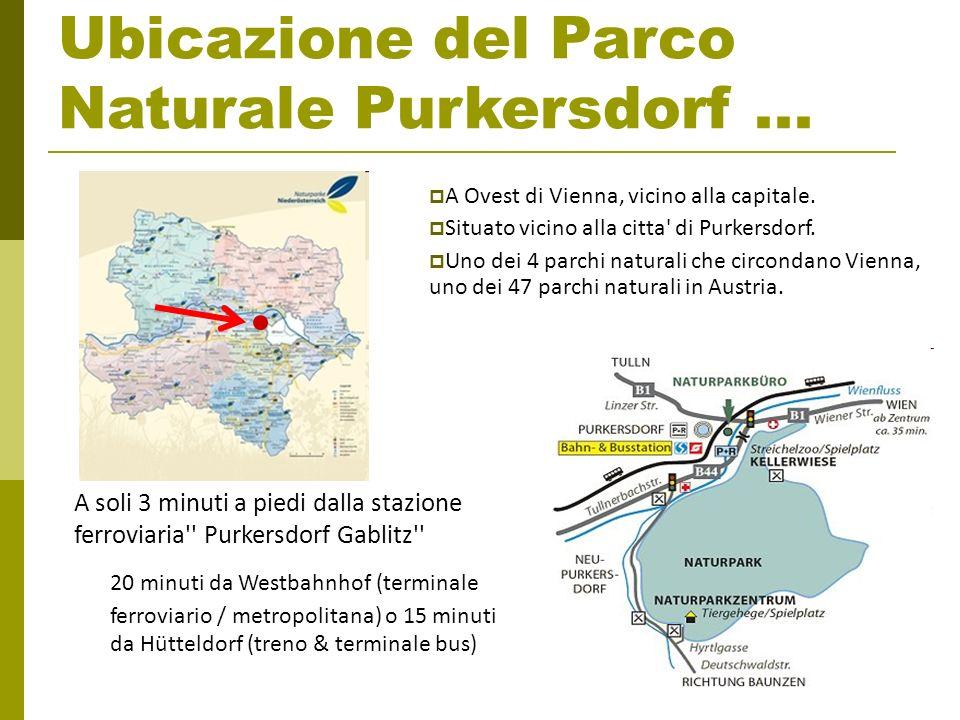 Ubicazione del Parco Naturale Purkersdorf ...
