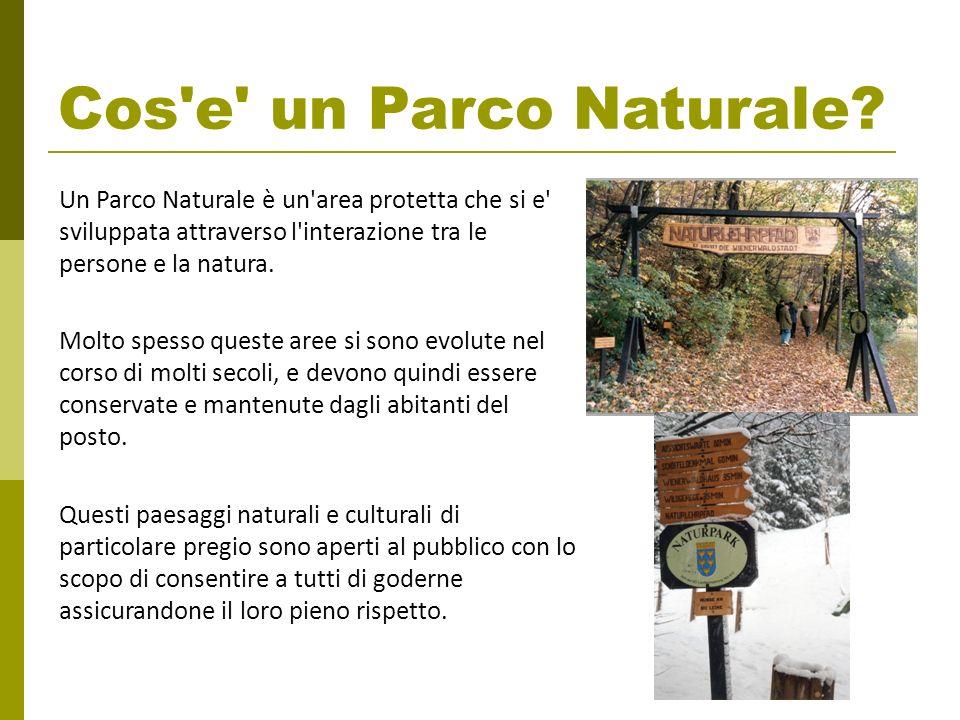 Cos e un Parco Naturale Un Parco Naturale è un area protetta che si e sviluppata attraverso l interazione tra le persone e la natura.