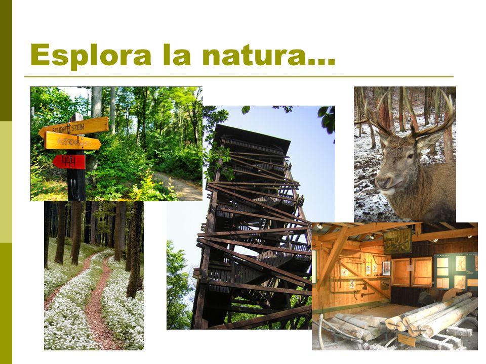 Esplora la natura…