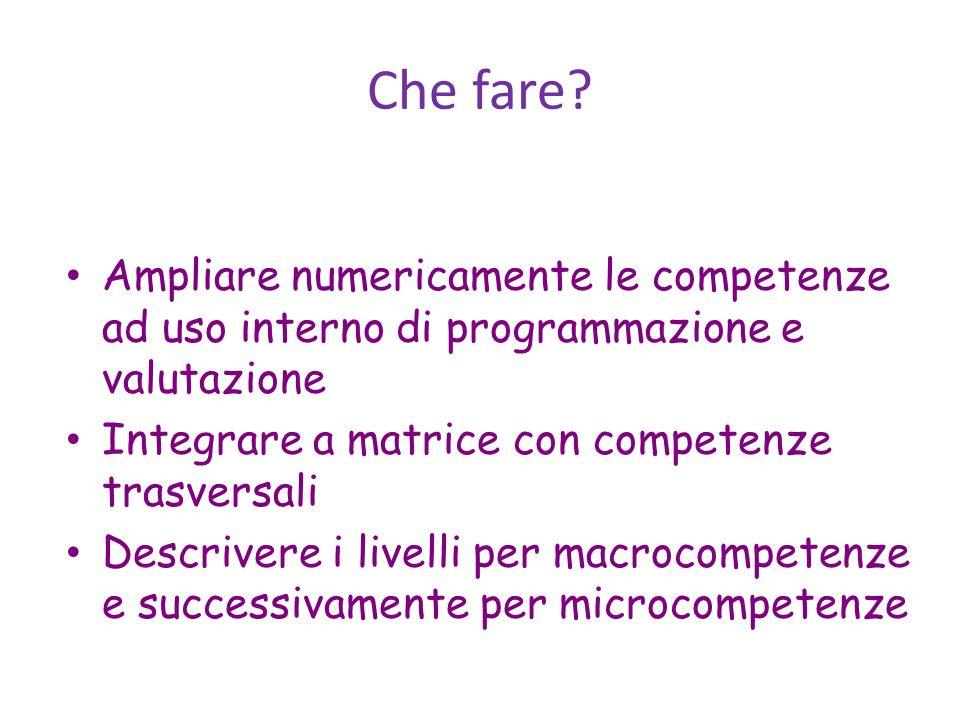 Che fare Ampliare numericamente le competenze ad uso interno di programmazione e valutazione. Integrare a matrice con competenze trasversali.