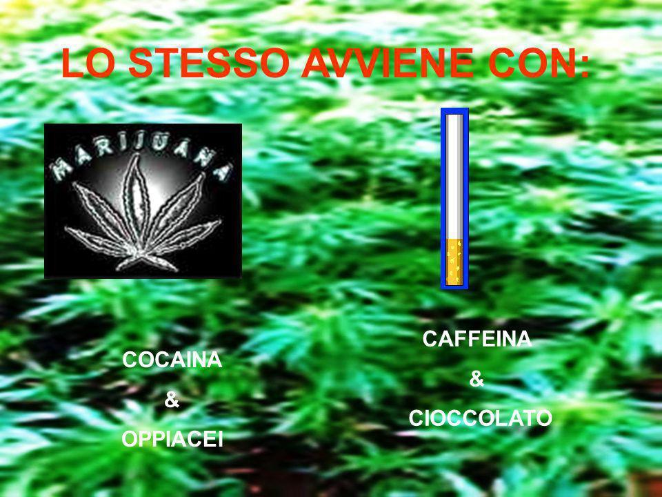 LO STESSO AVVIENE CON: CAFFEINA & CIOCCOLATO COCAINA & OPPIACEI