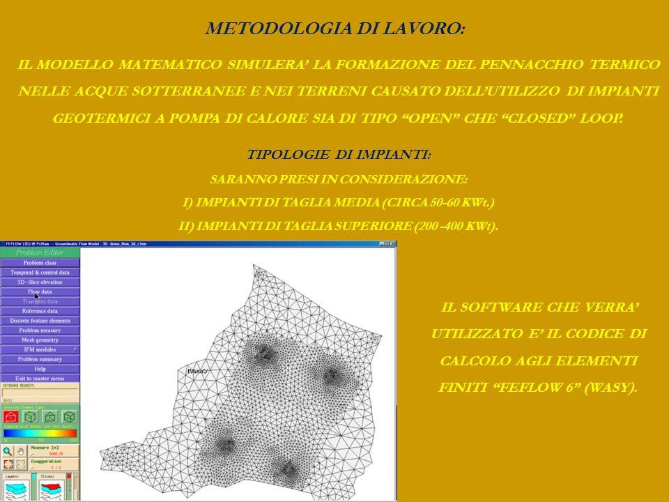 METODOLOGIA DI LAVORO: