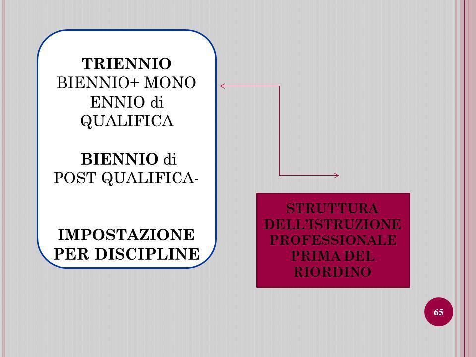 IMPOSTAZIONE PER DISCIPLINE STRUTTURA DELL'ISTRUZIONE PROFESSIONALE