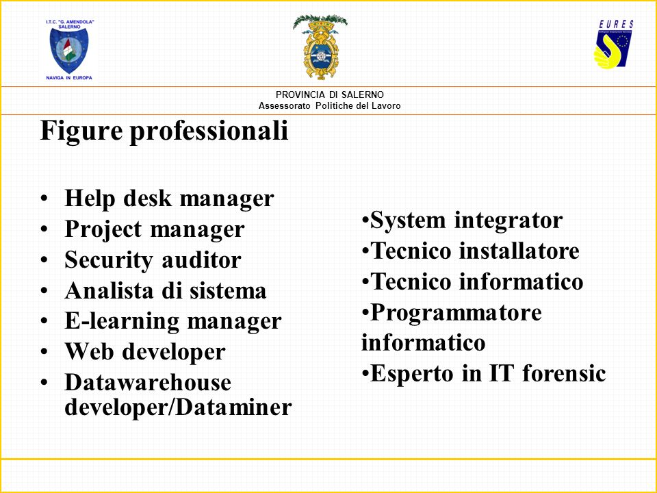 Figure professionali Help desk manager Project manager